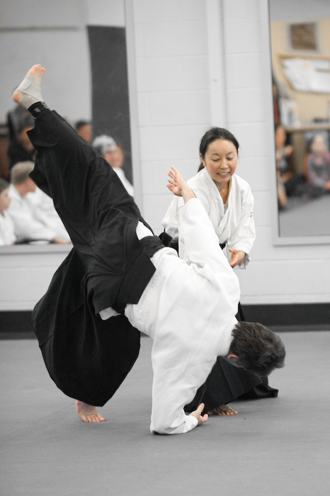 aikido-brisbane-planning