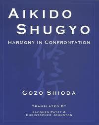 aikido-shugyo