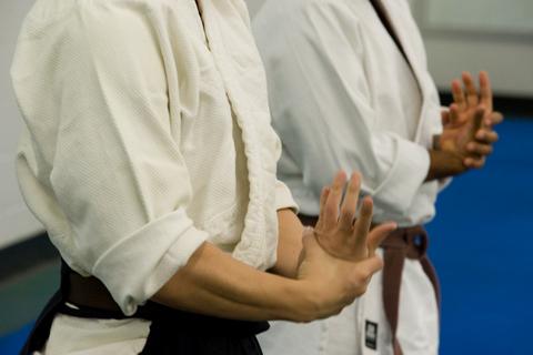 brisbane-aikido (2)