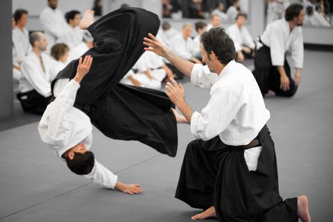 brisbane-aikido-murray-loader-seminar