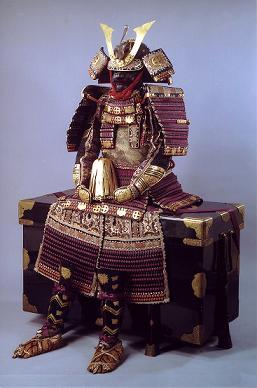 martial-arts-brisbane-armor-with-purple-lacing1