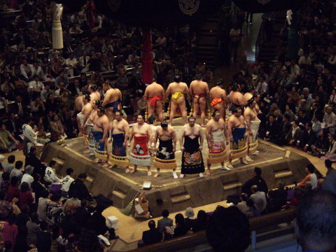 martial-arts-brisbane-sumo